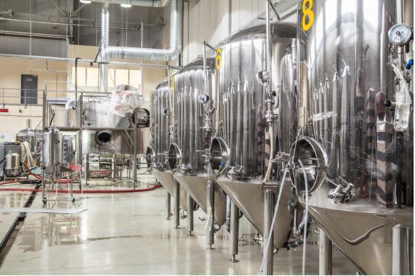 Beer Fermentation Process